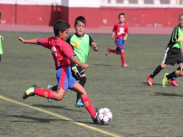 Amplio programa de actividades deportivas durante las Fiestas de San Ginés 2015