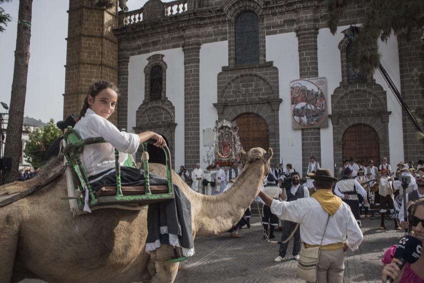 Los camellos de Lanzarote volvieron a la Romería del Pino 43 años después
