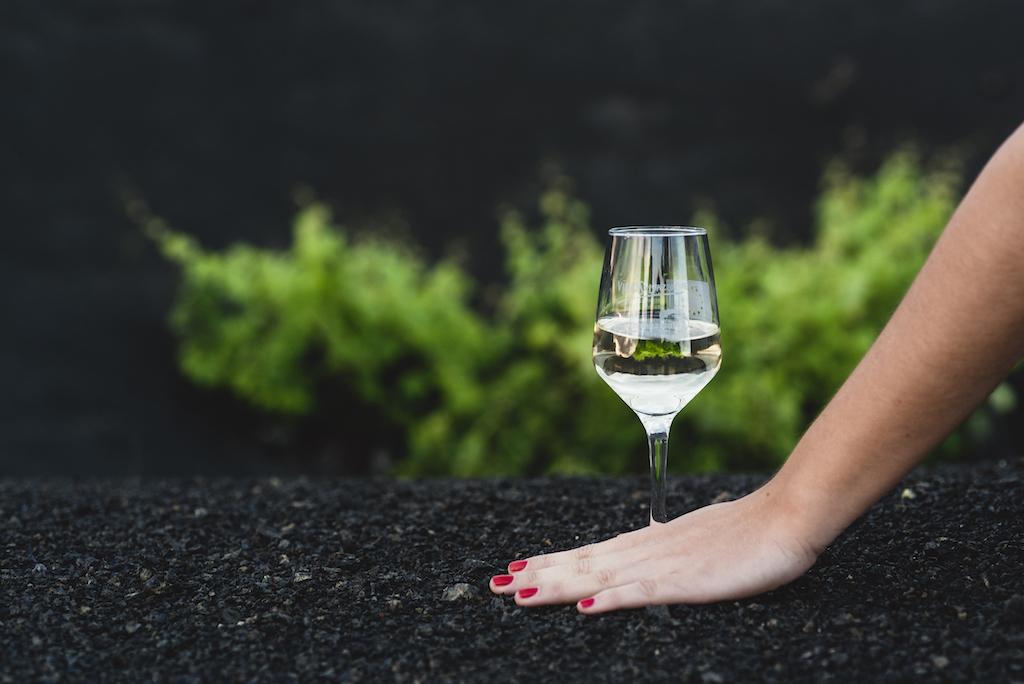 8 vinos de Lanzarote, seleccionados para el Salón Guía Peñín de los Mejores Vinos de España