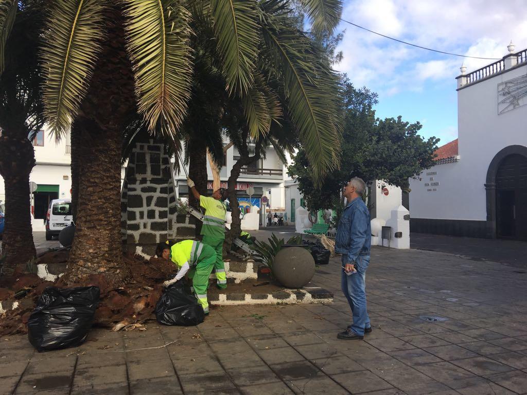 El Ayuntamiento de Arrecife acondiciona las zonas ajardinadas de la ciudad