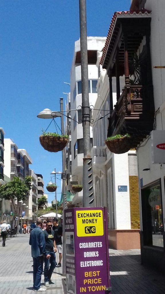El Ayuntamiento de Arrecife lleva a cabo la plantación de la flor de temporada de primavera
