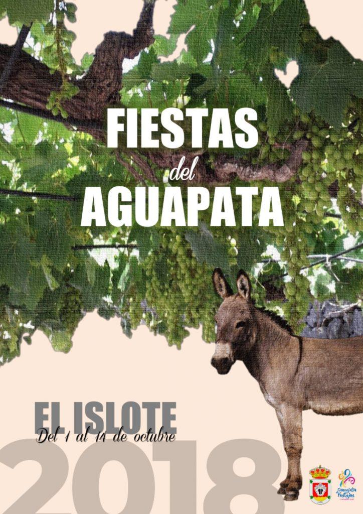 Comienzan los festejos de Aguapata en El Islote