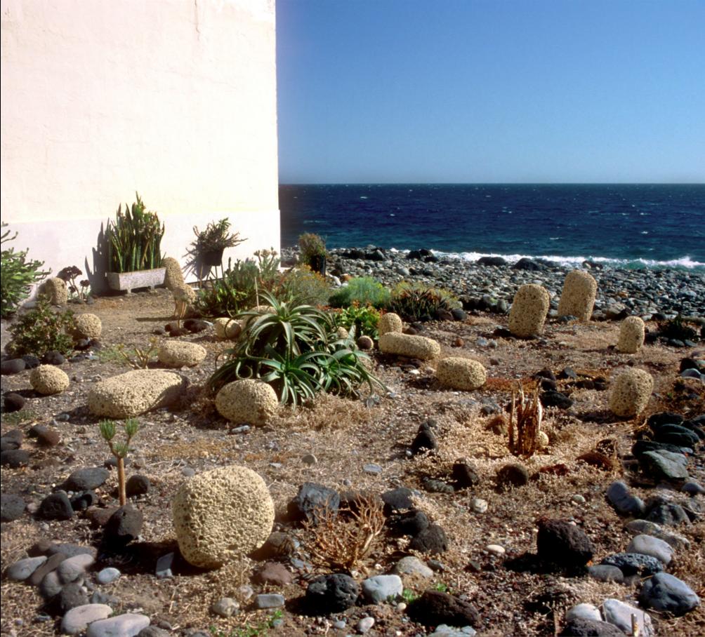 PHotoESPAÑA y los Centros de Arte, Cultura y Turismo del Cabildo de Lanzarote organizan la sexta edición del PHotoWalk PHE Lanzarote