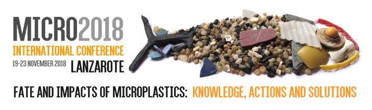 Lanzarote se convierte de nuevo en la capital mundial de la investigación sobre los microplásticos en la Conferencia Internacional Micro2018