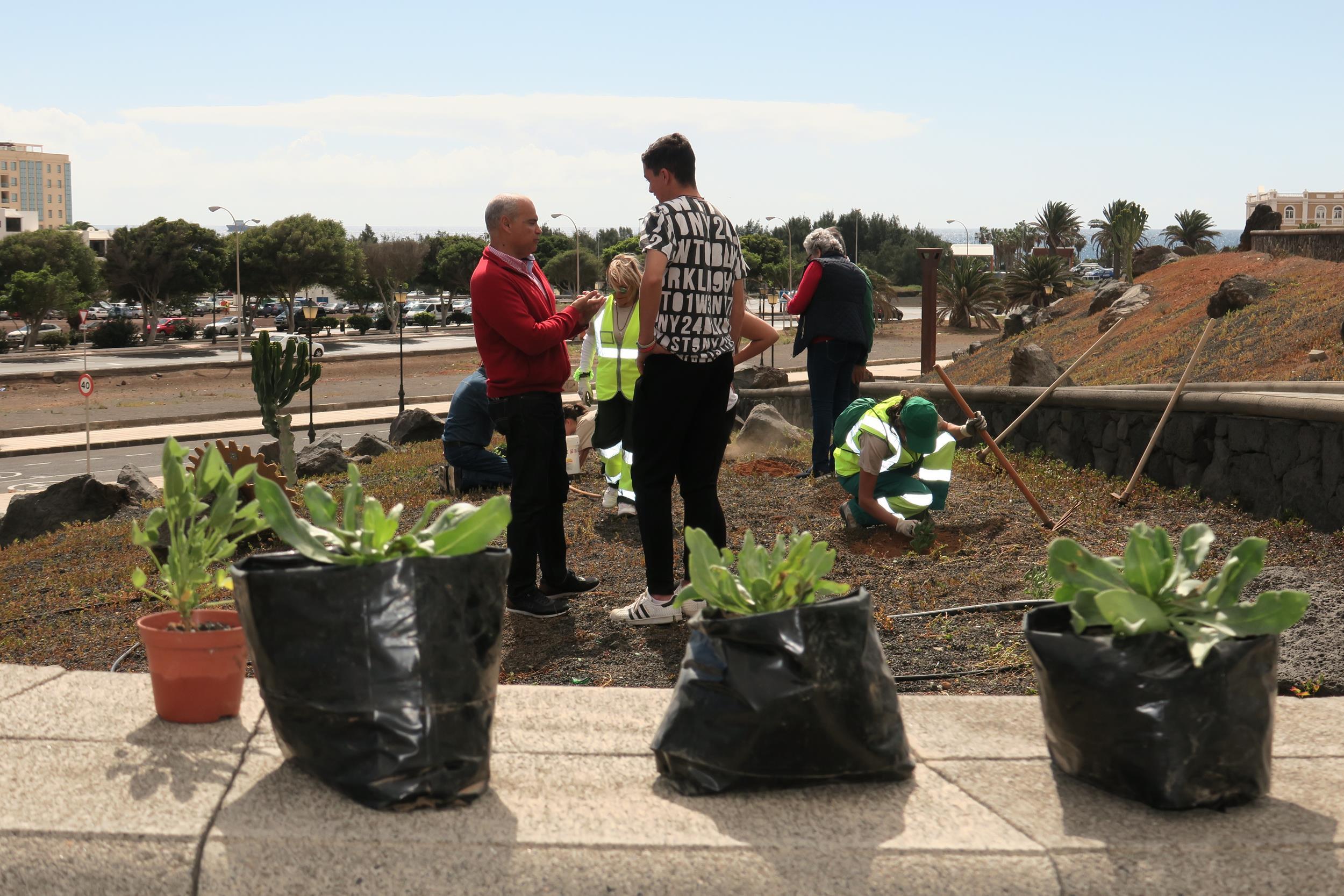 El Cabildo de Lanzarote y Rotary Club Lanzarote realizan una nueva acción de repoblación y ajardinamiento con plantas autóctonas en otro solar de Arrecife