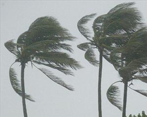 Declarada la situación de prealerta por vientos en Lanzarote, Fuerteventura y Gran Canaria