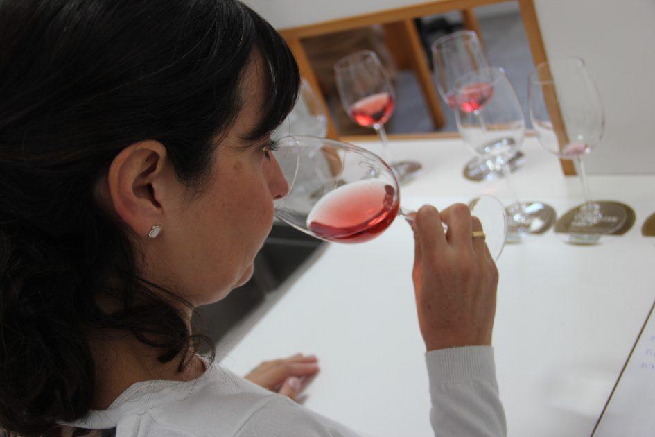 Convocado el Concurso Oficial de Vinos Agrocanarias 2019
