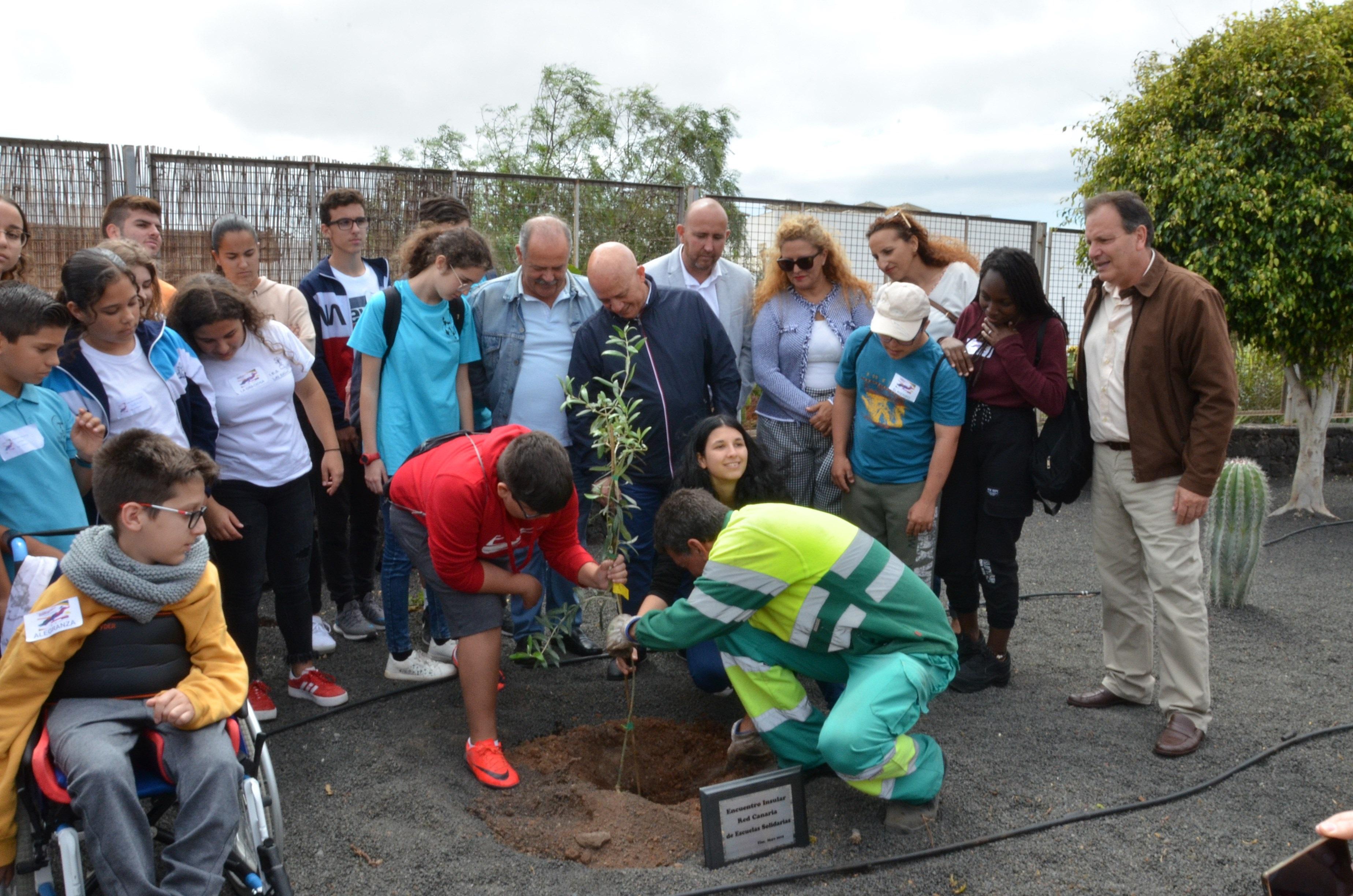 Un olivo plantado hoy recuerda en Tías la presencia de quince escuelas solidarias