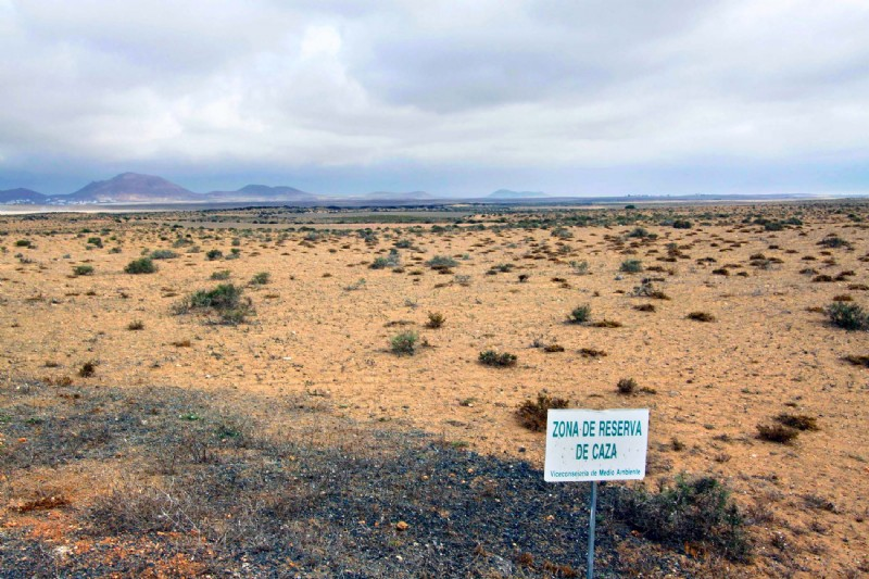 El Cabildo de Lanzarote anuncia la convocatoria de las pruebas para la obtención de la licencia de caza