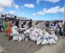 Más de 100 personas recogen basura en La Graciosa, gracias a Lanzarote Limpia y Líneas Romero