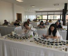 Comienza el concurso oficial para elegir el mejor gofio de Canarias