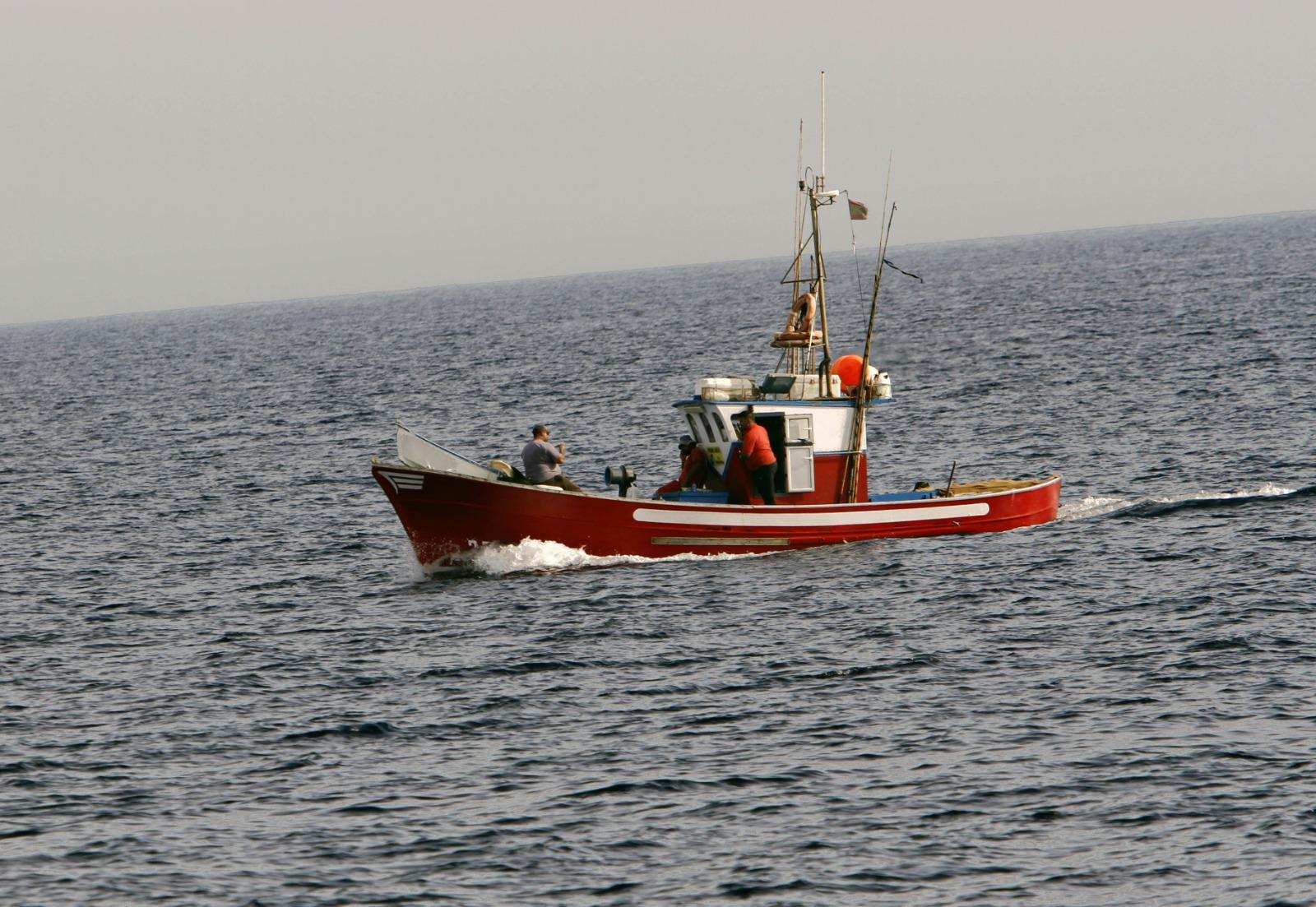 El Cabildo recuerda que la licencia de pesca marítima de recreo puede tramitarse online