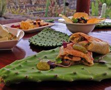 Creatividad y originalidad alrededor de la tunera en la nueva propuesta gastronómica del Jardín de Cactus