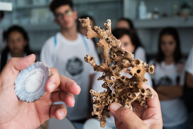 Canarias acorta distancias entre ciencia y ciudadanía