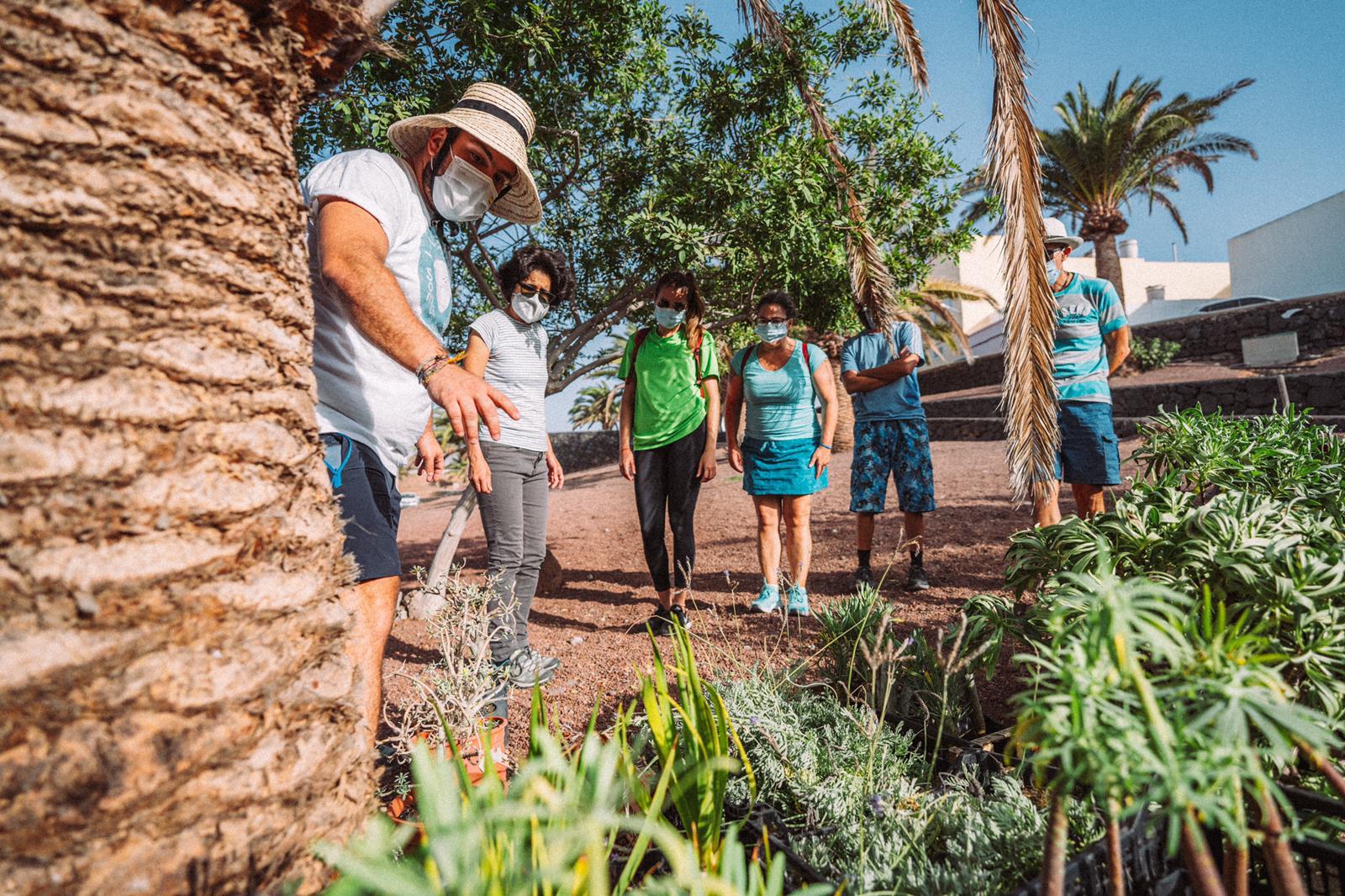Arrecife promueve la flora autóctona en los espacios verdes del municipio