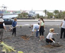 El programa de voluntariado 'Junt@s Somos Biosfera' organiza una nueva plantación de flora autóctona en el Parque de Los Pinos