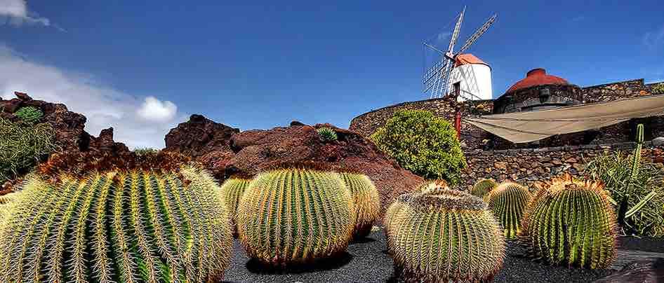 Lanzarote disfruta ya del reconocimiento de la Fundación Benetton al Jardín de Cactus