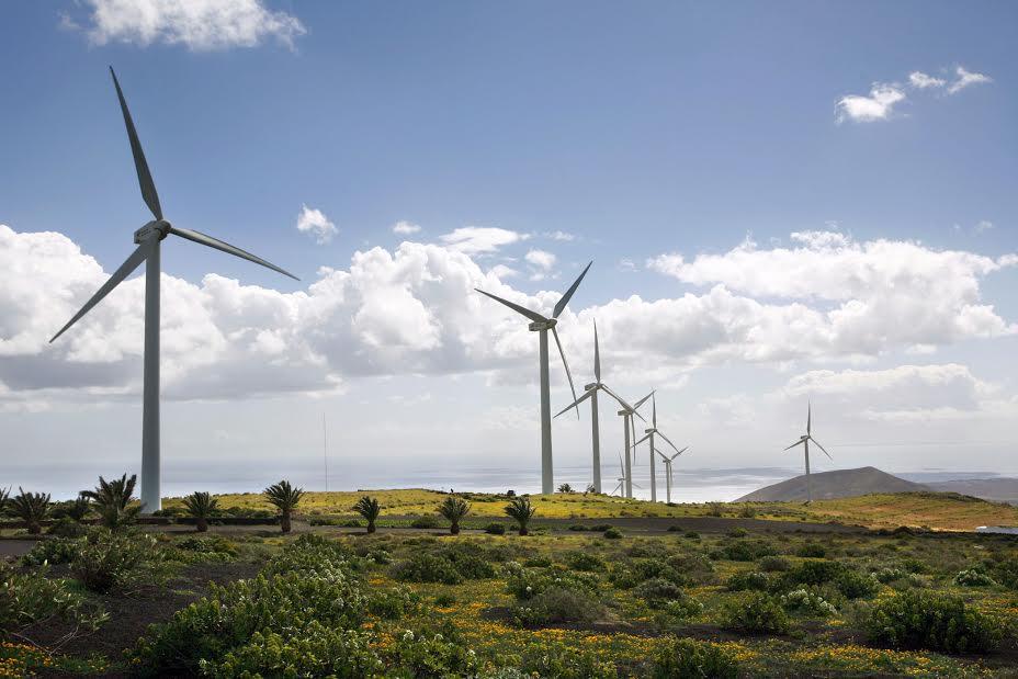 El Parque Eólico de Los Valles vuelve a abrir sus puertas a los estudiantes de Lanzarote