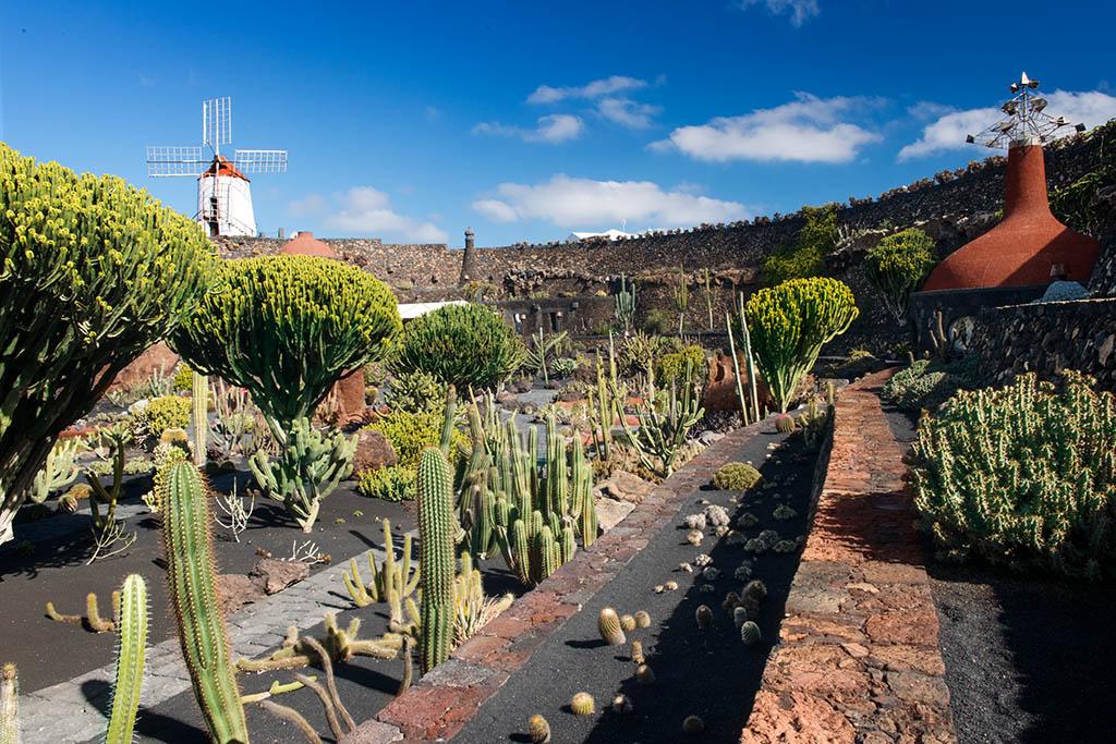 Lanzarote recibe el premio Carlo Scarpa concedido por la Fundación Benetton al Jardín de Cactus