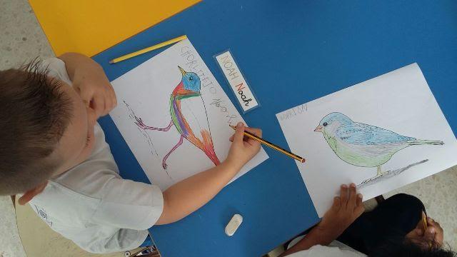 El Ayuntamiento de Arrecife promueve el cuidado y respeto de la avifauna entre los escolares del municipio