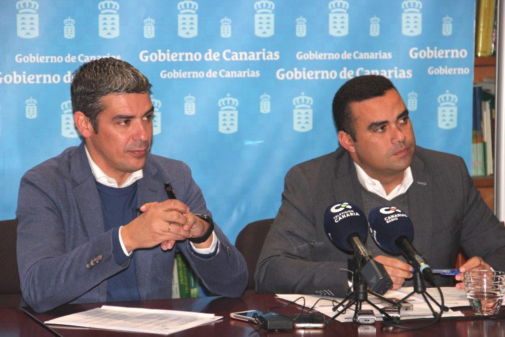 Europa da luz verde al aumento a la ayuda al tomate y la incorporación del olivo y aloe vera en el POSEI, propuestos por el Gobierno de Canarias