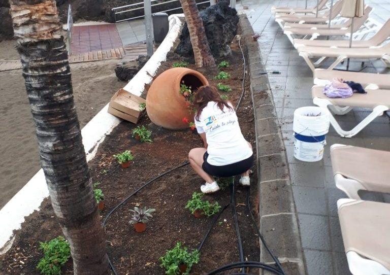 Tías embellece el entorno de Playa Chica dentro del Plan de Mejoras en todas las playas de Puerto del Carmen