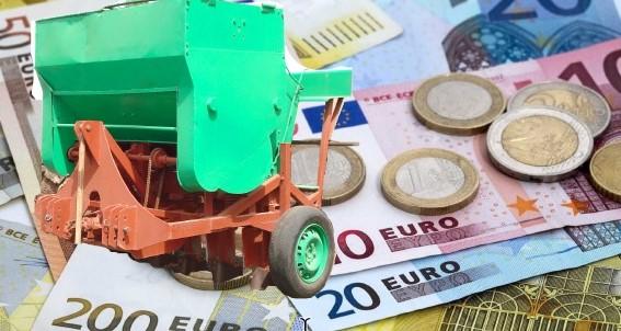 El Cabildo de Lanzarote organiza un curso sobre conocimiento de la empresa agrícola y otro de nivel básico para la obtención del carné de manipulador de productos fitosanitarios
