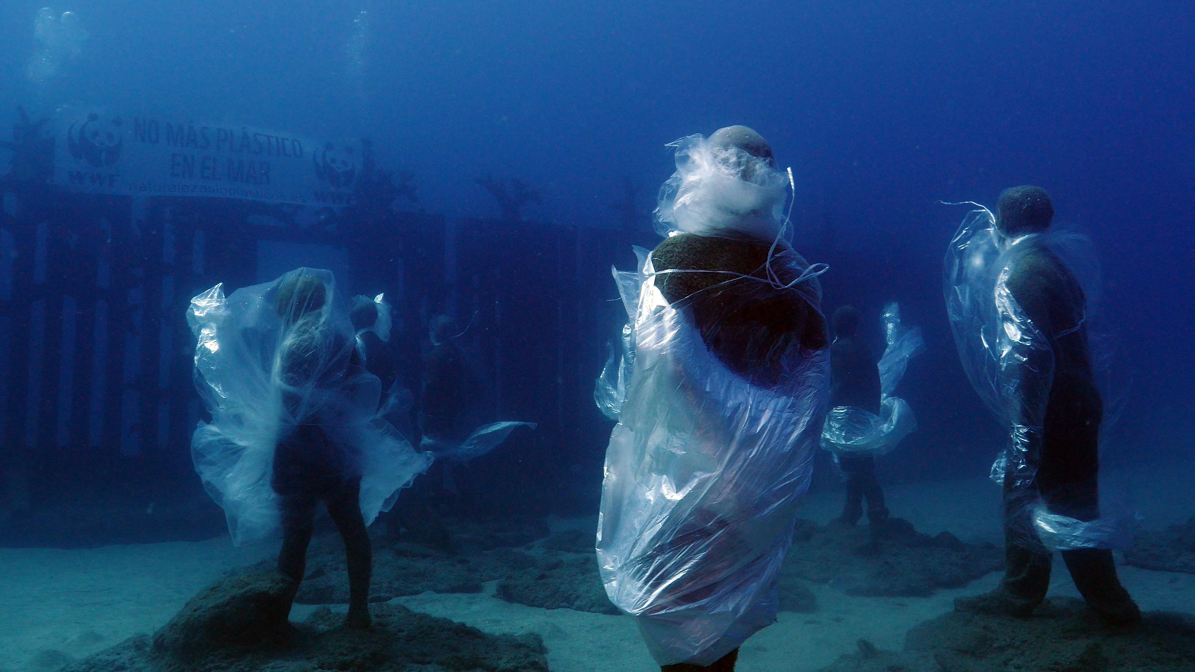WWF se sumerge en Canarias para denunciar la contaminación marina por plástico en los océanos del planeta