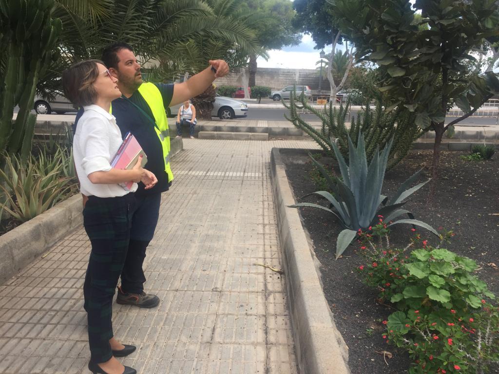 """Eva de Anta confirma en el Día Mundial del Medio Ambiente que """"Arrecife será una ciudad verde"""""""