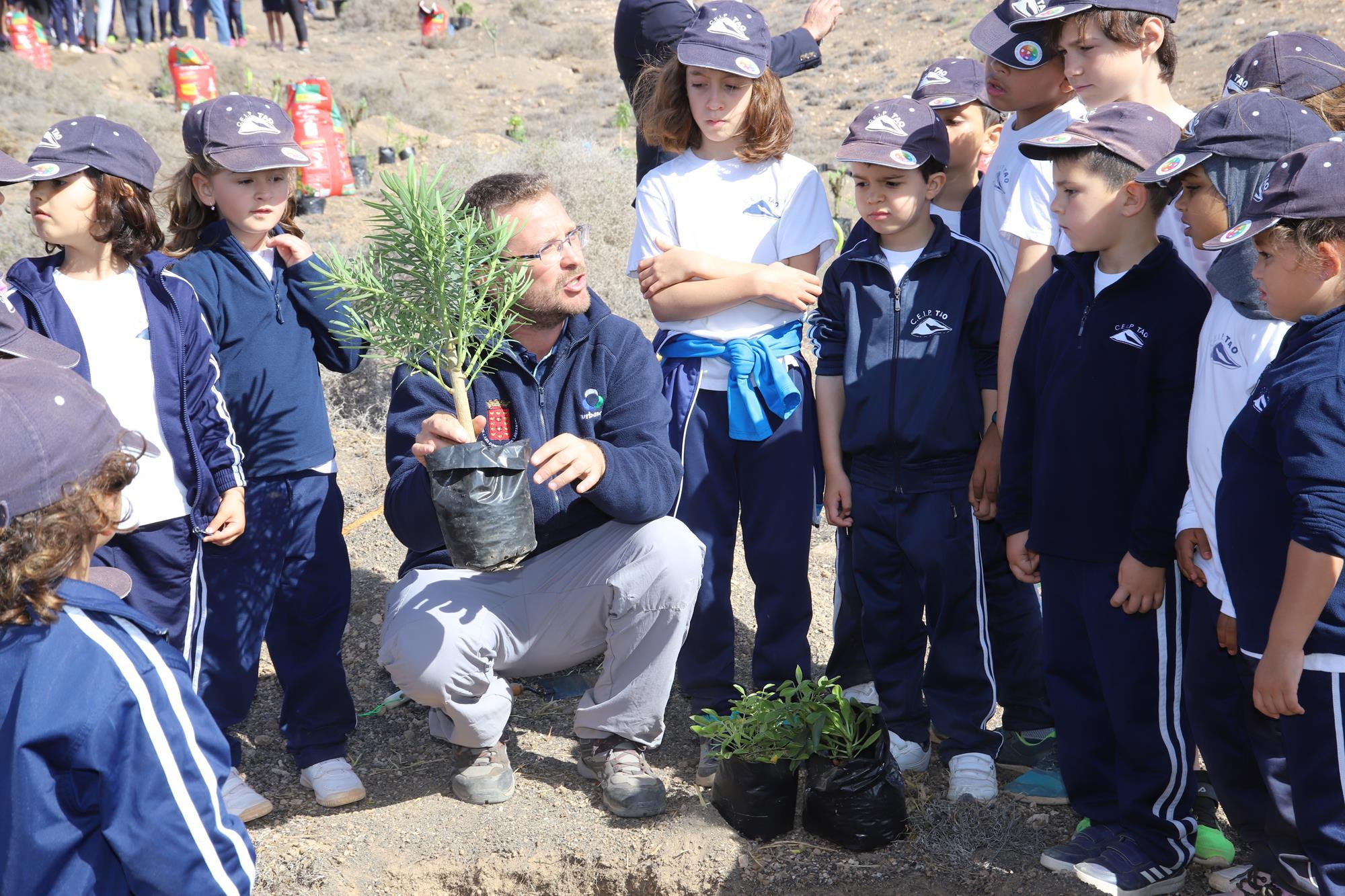 El Cabildo promueve el cuidado del Medio Ambiente con una plantación de especies autóctonas en Tías