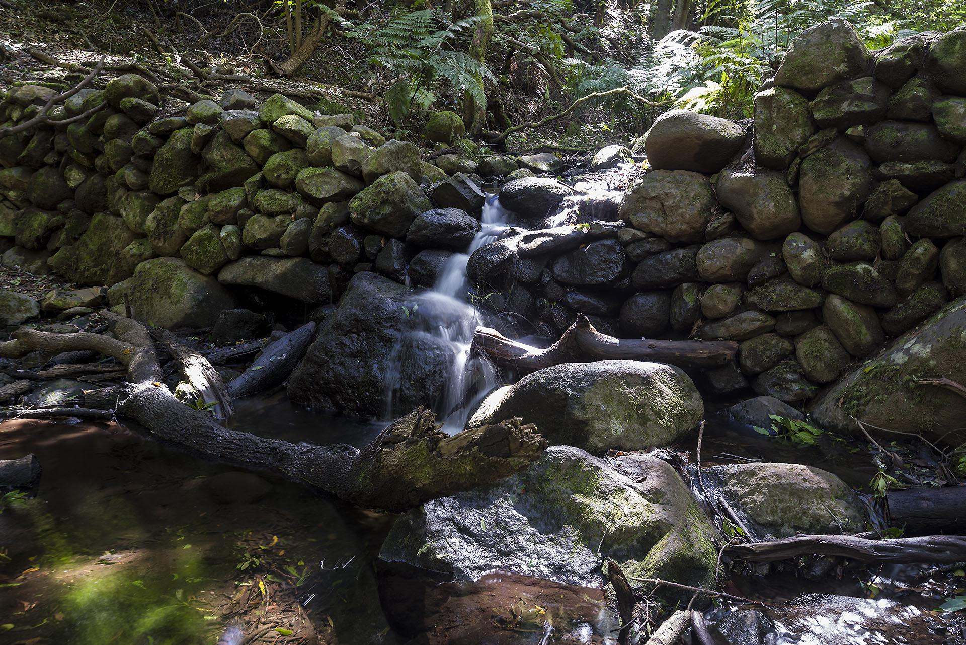 Marcos Martín nos descubre los sistemas de explotación del agua en Canarias