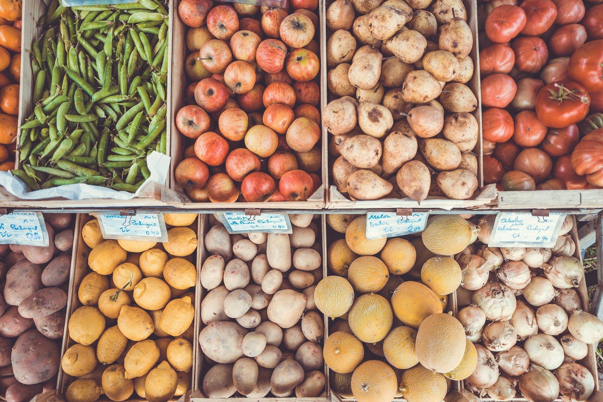 El Gobierno de Canarias promueve la participación de las empresas hortofrutícolas de las islas en la feria internacional