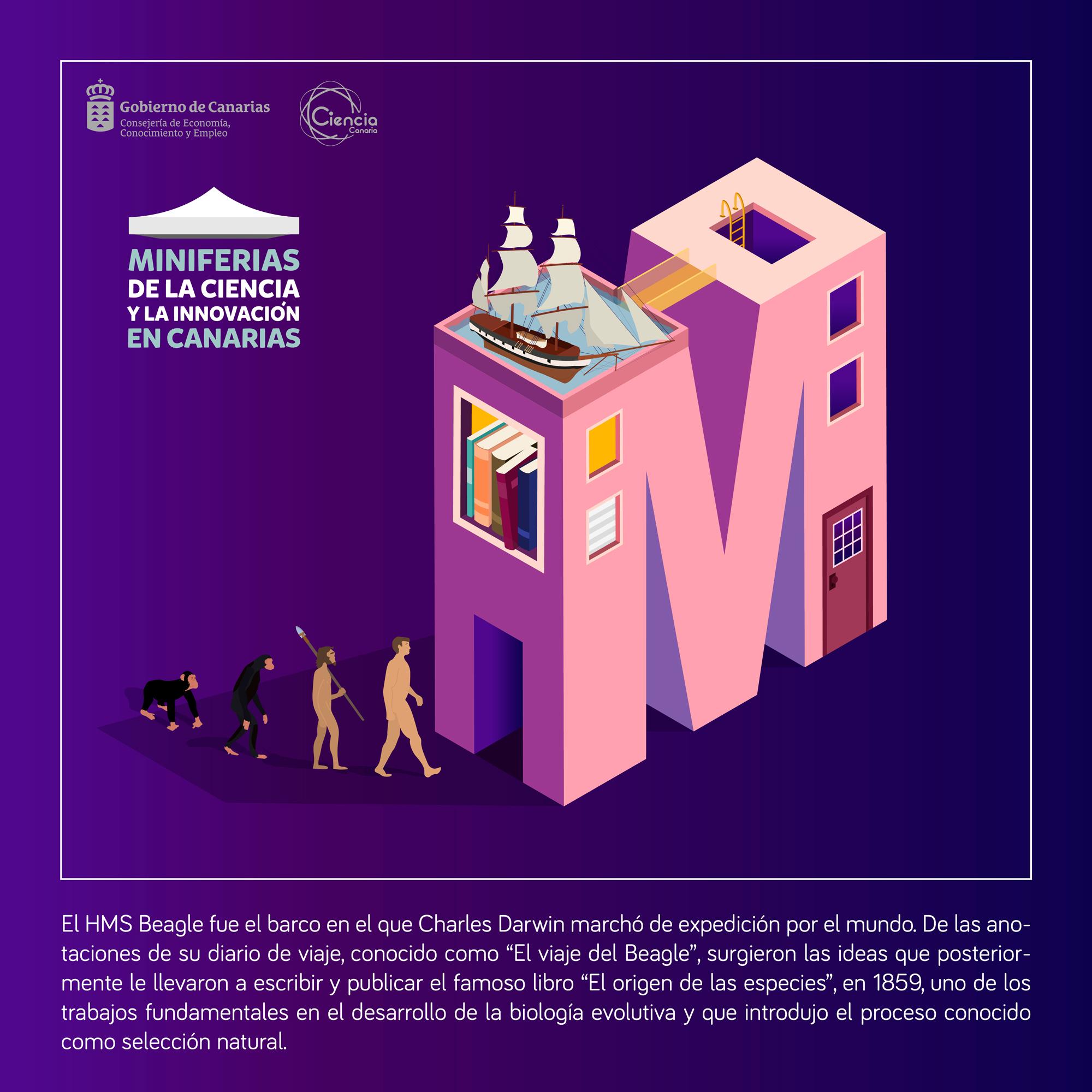Nuevos referentes femeninos en tecnología, ciencia e innovación creados por mujeres de Canarias