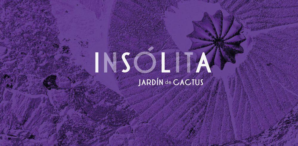 """Jardín de Cactus """"Experiencia Insólita"""""""