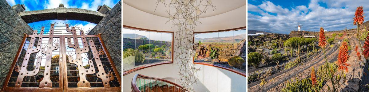 Jardín de Cactus Experiencia Insólita