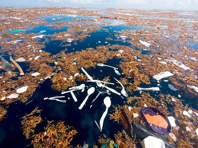 Lanzarote acoge la conferencia internacional 'Polución por plásticos, de macroplásticos a nanoplásticos: MICRO 2020'