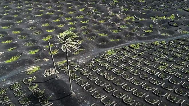 La Cámara de Comercio de Lanzarote y La Graciosa reivindica un pacto por el paisaje