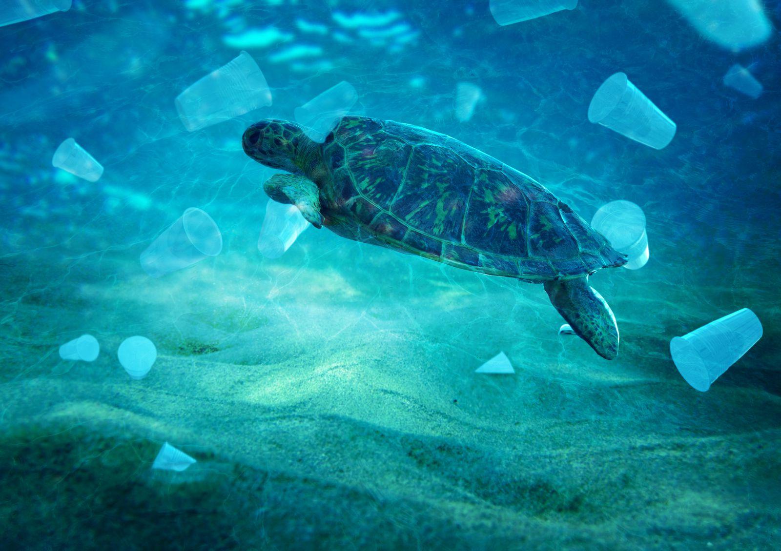 Gobierno y patronales acuerdan aplazar el decreto de plásticos de un solo uso