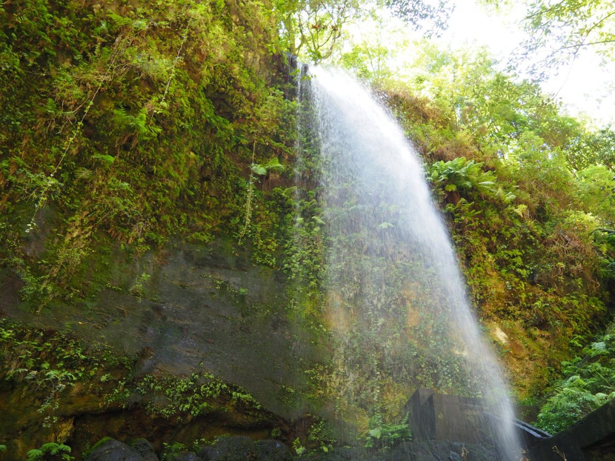 Gobierno y la ULL medirán el impacto ambiental del turismo, la agricultura y el ciclo del agua en Canarias