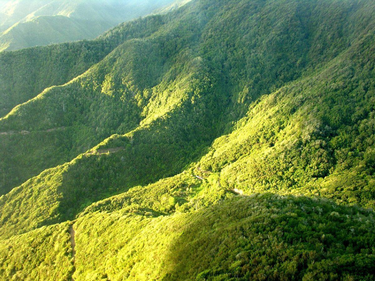 Transición Ecológica  organizan unas jornadas sobre adaptación al cambio climático en La Gomera