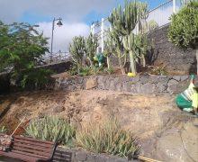 Tías se embellece con los trabajos de los PFAEs en jardinería, limpieza y albañilería
