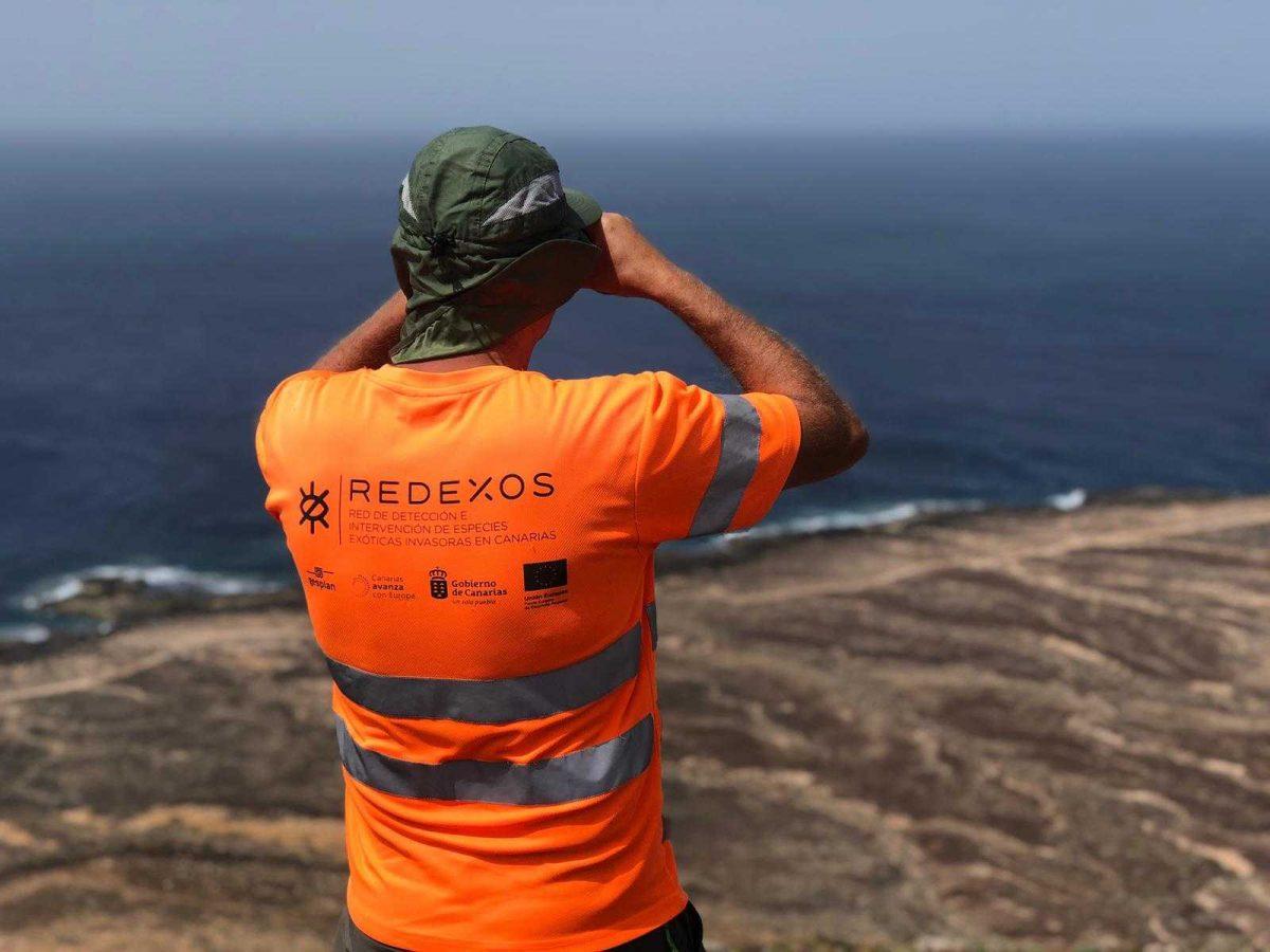 El Gobierno de Canarias mejora la aplicación móvil RedEXOS para detectar e intervenir especies exóticas