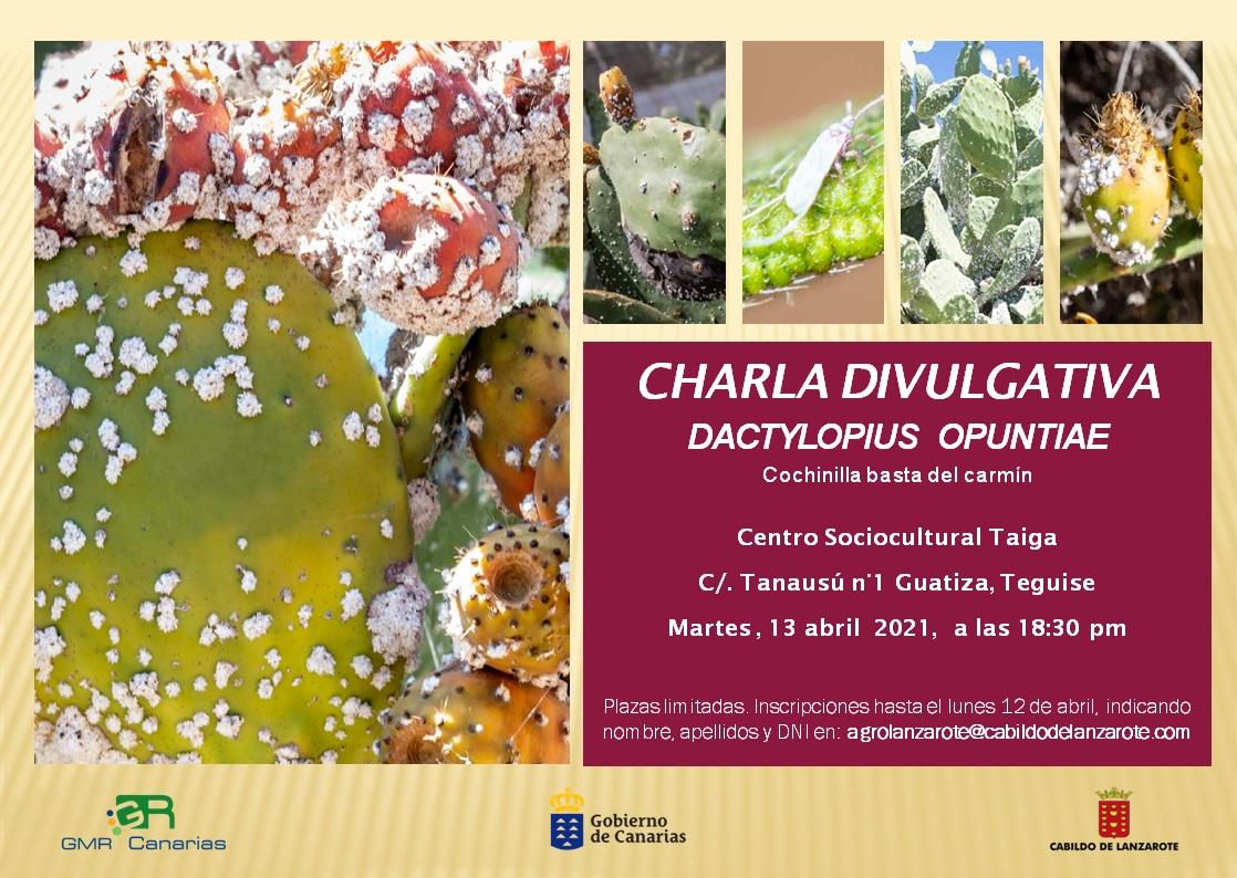 Lanzarote acoge una charla divulgativa sobre la nueva plaga de cochinilla detectada en Canarias