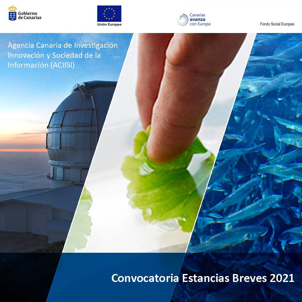 Conocimiento destina 200.000 euros para formación del personal investigador en estancias breves