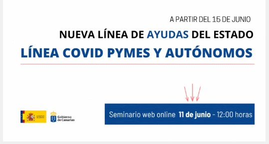Seminario web: «Línea Covid de ayudas directas a personas autónomas y empresas»
