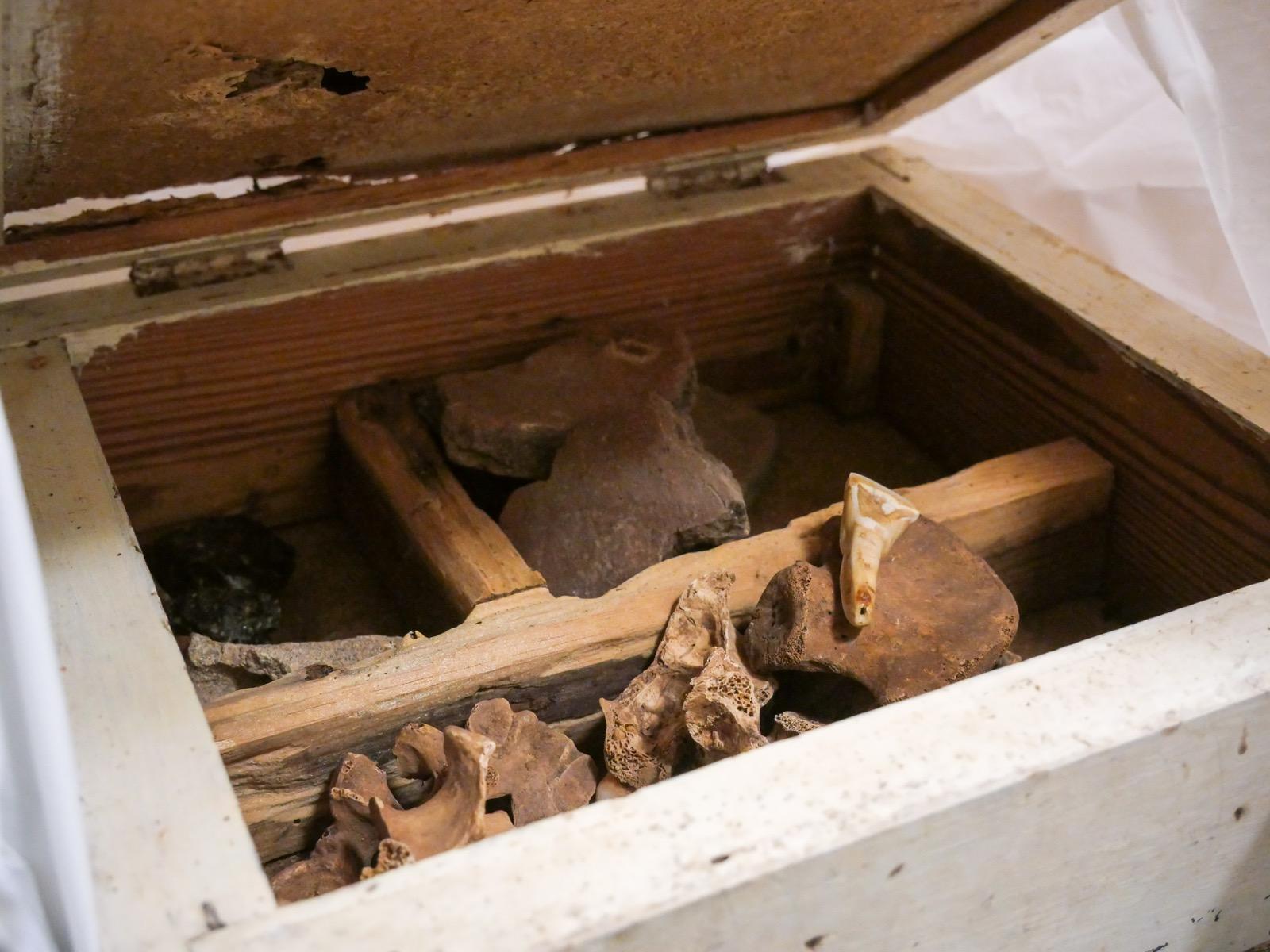 Patrimonio Cultural entrega 17 cajas de material arqueológico guanche al MUNA