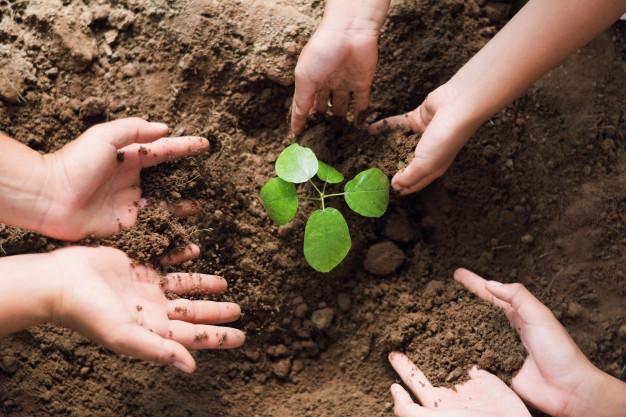 570 escolares de Arrecife participan en la campaña de sensibilización de zonas verdes 2021