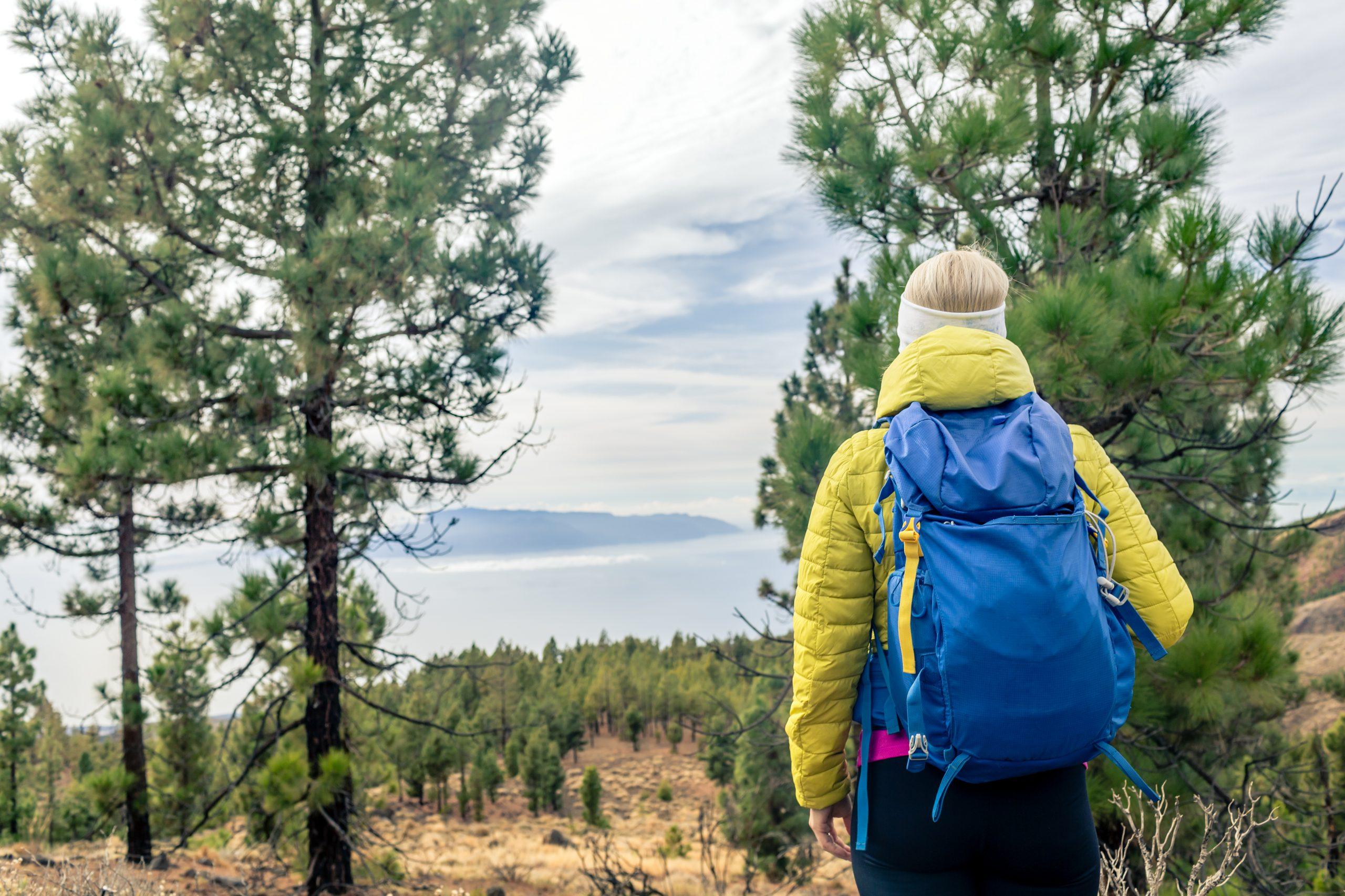 La Gomera, destino de excelencia de Turismo Activo 2020, cierra el Ciclo de Conferencias de Activa Canarias
