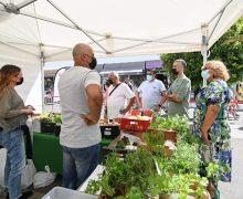 Playa Honda se vuelca con el Mercado Agrícola y Artesanal