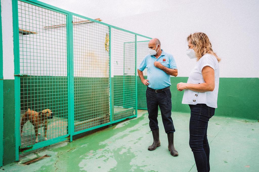 Sale a licitación la gestión del Centro de Protección Animal de Arrecife
